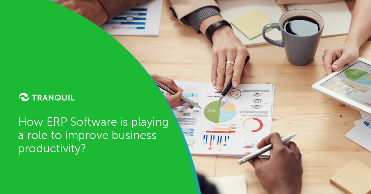 ERP Software improves business productivity